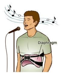 Diaphragm 2