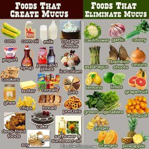 Mucus food table
